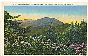 Mt Mitchell Altitude 6711 Feet NC p27109 (Image1)