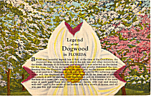 Legend Of The Dogwood in Florida (Image1)