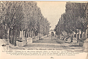 Arles Les Alyscamps. Allee Des Tombeaux