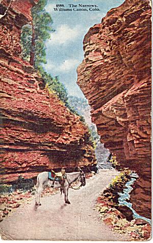 The Narrows Williams Canon Colorado p27509 (Image1)
