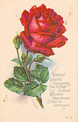 Beautiful Rose on a Loving Greeting Postcard p27539 (Image1)