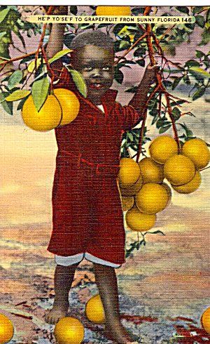 He p Yo Se F to Grapefruit From Sunny Florida p27626 (Image1)