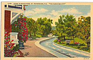 Roser Park St Petersburg Florida p27783 (Image1)