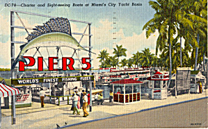 Charter and Sightseeing Boats, City Yacht Basin, Miami (Image1)