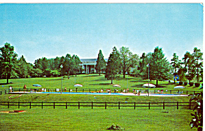 Mimslyn Motor Inn Luray Virginia Postcard P27934