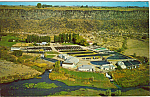 Snake River Trout Farm, Buhl, Idaho (Image1)