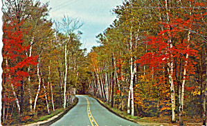 Route 2 Between Gorham And Shelburne Nh P28015