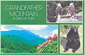Grandfather Mountain  NC Postcard p2801 (Image1)