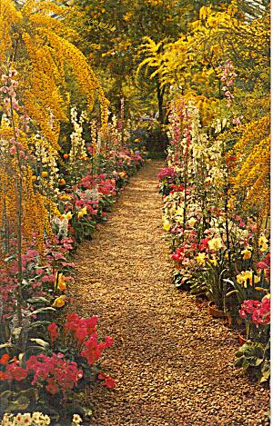 Longwood Gardens Kennett Square Pennsylvania p28092 (Image1)