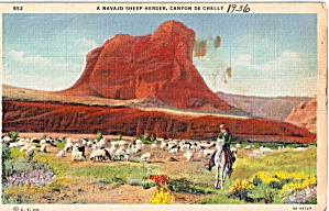 Navajo Sheep Herder In Canyon De Chelly Arizona P28128