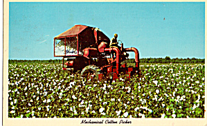 Mechanical Cotton Picker Postcard P28154