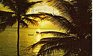 A Florida Sunset p28189 (Image1)