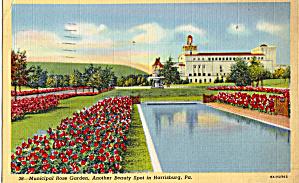 Municipal Rose Garden, Harrisburg,Pennsylvania (Image1)