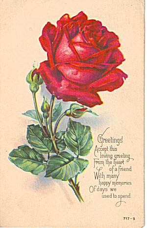 Greetings Post card with nice rose motif 1923 p28230 (Image1)