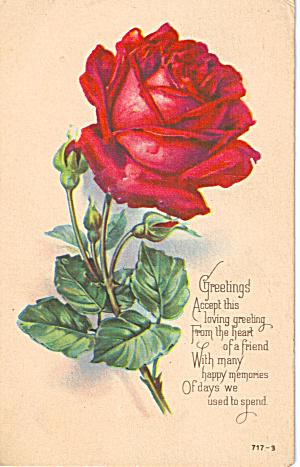 Greetings Post card with nice rose motif 1923 p28230 (Image1)