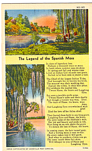 The Legend of The Spanish Moss (Image1)