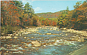 Mountain Stream Scene Poconos Pennsylvania P28470