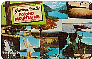 Small Scenes, Poconos,Pennsylvania (Image1)