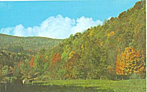 Spruce Knob, Monongahela National Forest. (Image1)