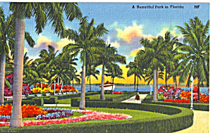 A Beautiful Park in Florida p28514 (Image1)