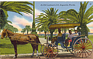 Horse Drawn Carriage in St Augustine Florida p28523 (Image1)