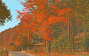 Autumn Scene in Pennsylvanias Big Game Country (Image1)