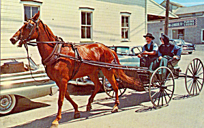 Amish Family with Horse Drawn Open Buggy (Image1)
