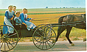 Amish Girls With Horse Drawn Open Buggy P28586