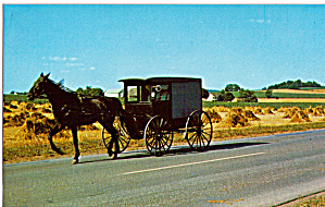 Amish Family with Horse Drawn  Buggy (Image1)