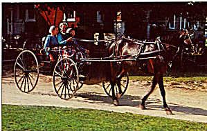 Amish Girls in Horse Drawn Buggy Postcard p28623 (Image1)