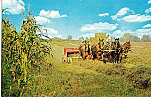 Harvesting Hay Postcard p28716 (Image1)