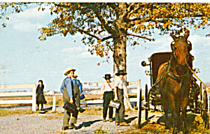 Amish Children leaving school with Father in Buggy p28720 (Image1)