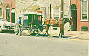 Amish Man with Buggy in Lancaster,PA p28721 (Image1)