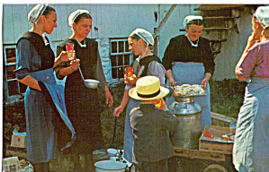 Amish Women Serving Refreshments after Sunday Meeting p28740 (Image1)