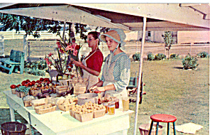 Amish Roadside Produce Stand Postcard p28741 (Image1)