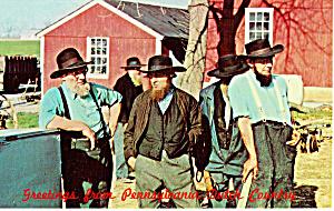 Amish Men at Public Sale of Farm Equipment p28802 (Image1)