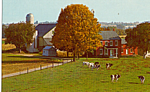 Amish Country Farm Postcard p28810 (Image1)