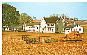 Harvesting Corn Fodder Postcard p28813 (Image1)