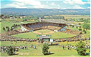 Little League World Series Stadium Postcard