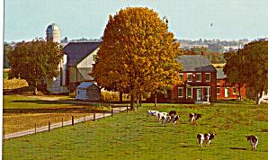 Typical Amish Farm Postcard p28970 (Image1)