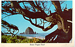 Scenic Oregon Coast (Image1)