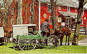 Amish Man On Buckboard Postcard p29035 (Image1)