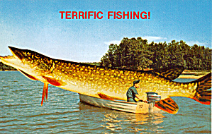 Terrific Fishing Here p29056 (Image1)