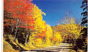 Fall Splendor in New England Postcard p29061 (Image1)