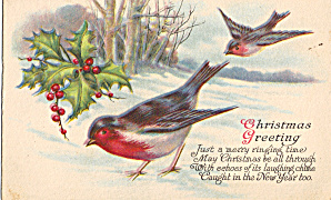 Christmas Card With Birds and Holly (Image1)