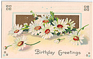 Birthday Greetings on Daisy Decorated Postcard p29315 (Image1)