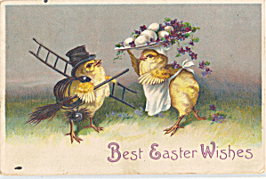 Pair of Chicks Easter Postcard p29326 1910 (Image1)