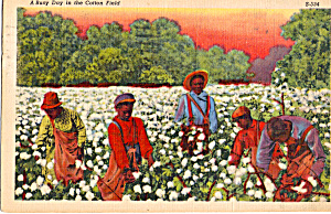 A Busy Day in the Cotton Field (Image1)