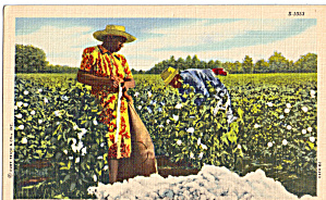 Workers in a Cotton Field Postcard p29348 (Image1)