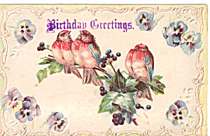 Birthday  Vintage Postcard p29404 with Birds (Image1)